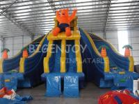Summer Amusement Park Water Slide with Swimming Pool