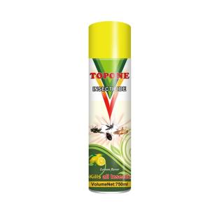 Wholesale insecticides: China Factory 750ml Water Based Rapid Good Quality Household Insecticide Spray