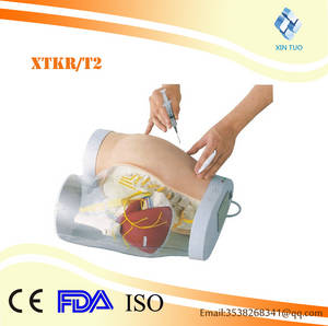 Wholesale transparent: Advanced Hips Intramuscular Injection and Transparent Contrast Model