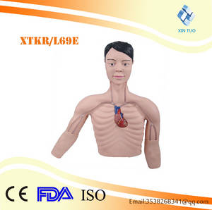 Wholesale train models: PICC Interventional Training Model