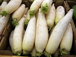 Wholesale chilie: Radish / Fresh Radish/Fresh Carrots/Chili Pepper/Bell Pepper
