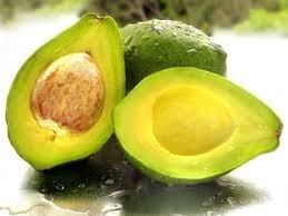 Wholesale Avocados: Avocado From Viet Nam