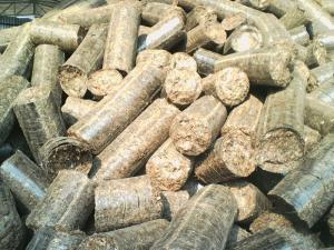 Wholesale ecologic product: Hay Pellets for Bedding
