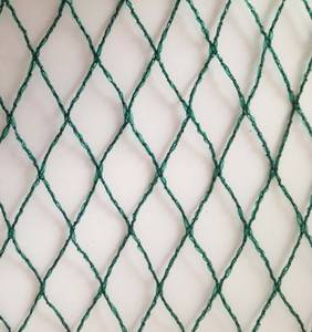 Wholesale raw diamond: Virgin HDPE Agricultural Bird Netting with UV