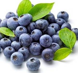 Wholesale anthocyanin extract: Blueberry Extract Anthocyanin 5%-25%