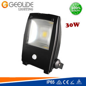 Wholesale pir: Quality 30W Outdoor LED Floodlight for Park with CE (FL110PIR-10W-50W)