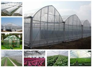 Wholesale opaque polymer: 3 Layers Plastic Greenhouse Film