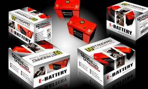 Wholesale Auto Batteries: Motorcycle Lithium Battery WEX5L14-MF