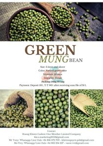 Wholesale Mung Beans: Indonesia Green Mung Bean