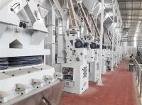 200T/D Rice Mill Plant