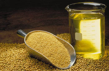 Sell Refined and Crude Soybean Oil
