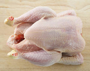 Wholesale whole chicken: Halal Whole Frozen Chicken