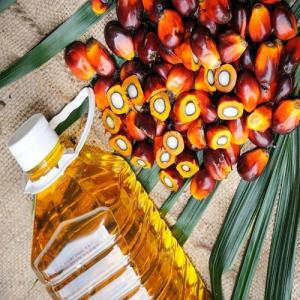 Wholesale palm kernel oil: Natural Rbd Palm Oil From Malaysia