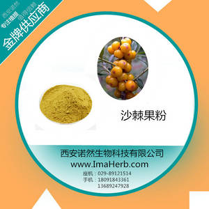 Wholesale powder spary: Manufacturer Supply SD Organic Sea Fruit Buckthorn Powder. Spary Dried Sea Buckthorn Powder