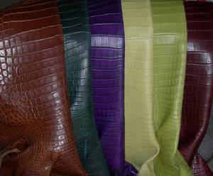 Wholesale genuine crocodile leather: Crocodile Skins