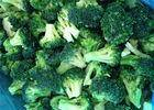Wholesale frozen broccoli: IQF Individually Quick Frozen Broccoli Custom Size / Packaging Acceptable