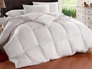 Wholesale down feathers: Goose Down and Feather Quilt