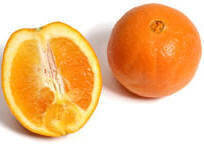 Wholesale Citrus Fruit: Citrus Fruits Navel Oranges