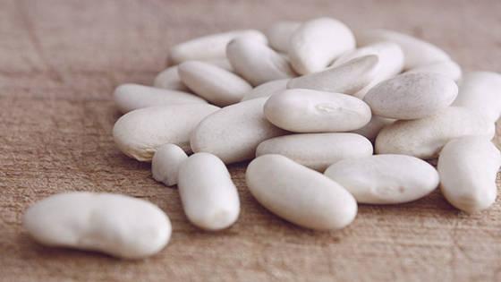 Sell White Kidney Bean