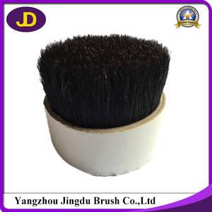 Wholesale boiled bristle: Natural Boiled Black Bristle Manufacturer
