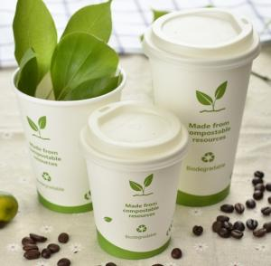 Wholesale coffee cup: Eco-Friendly Sugarcane PLA Cup Paper Coffee Cup