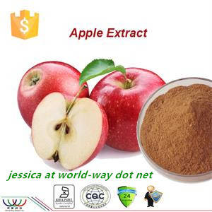 Wholesale Plant Extract: Natural Free Sample Anti-oxidant Apple Extract Polyphenol,KOSHER Apple Bark Extract 95%