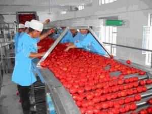 Wholesale bag aseptic filling machine: Tomato Paste Product Line