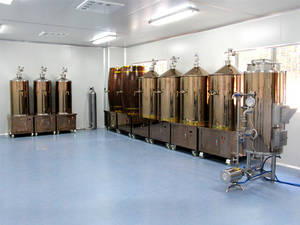 Wholesale micro brewery equipment: Multifunctional SUS304 Micro Beer Brewery Equipment for Wholesales
