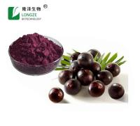 Free Sample Fruit Powder Plant Extract Acai Berry Extract
