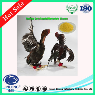 Poultry Fighting Cock Medicine Replenish Energy for Paly Electrolyte Vitamin Premix Powder