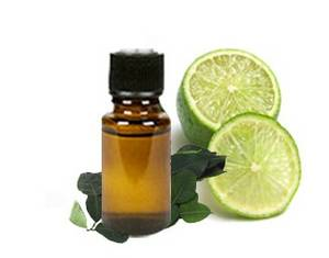 Wholesale tires to oil plant: Lime Essential Oil