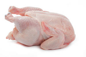 Wholesale whole chicken: HALAL Frozen Whole Chicken
