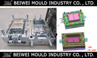 Plastic Injection Fish Crate Mould
