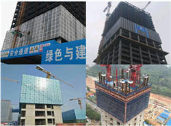 Wholesale Scaffoldings: Attached Type Electrical Lifting /Self-climbing Formwork/Scaffold/Frame/Template System Manufacturer