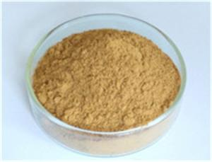 Wholesale astragaloside iv: Astragalus Root Extract,Astragalus Root Extract Lowering Blood Lipid,Astragalus Root Extract Protect