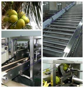 Wholesale juice sterilizer: Coconut Processing Line