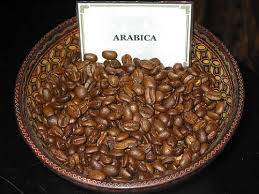 Wholesale coffee: Robusta and Arabic Coffee Beans