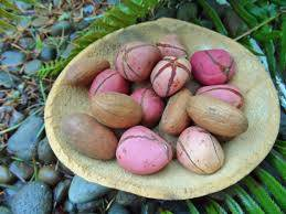 Wholesale Other Nuts & Kernels: Best Quality Kola Nut for Export