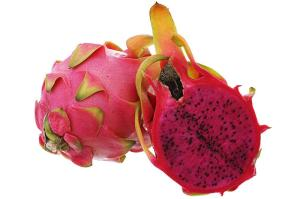 Wholesale fresh dragon fruit: Fresh Dragon Fruit