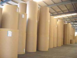 Wholesale tray seal: PE Laminated Kraft Paper