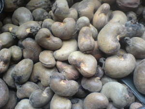 Wholesale lighting: Premium Grade Cashew Nuts with Shell