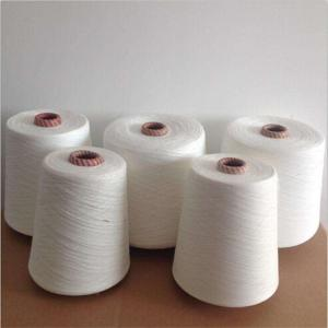 Wholesale polyester: Polyester Cotton Yarn