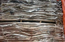 Wholesale head: Wet Salted Cow Hide, Donkey Hide, and Cow Head for Sale