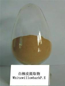 Wholesale Plant Extract: White Willow Bark Extract |Salicin