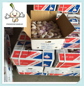 Wholesale red garlic: Red Garlic