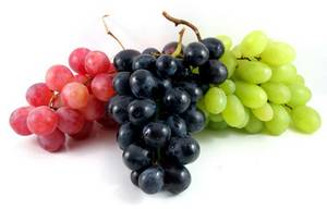 Wholesale grapes: Fresh Grapes