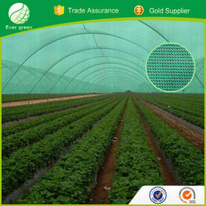 Wholesale summer mat: HDPE with UV Material Sun Shade Net for Agriculture and Horticulture
