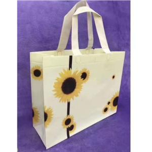 Wholesale advertising gift: Custom Shopping Non-woven Packing Hand Bag