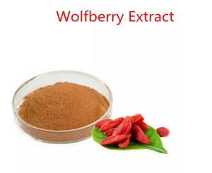 Wholesale wolfberry: Wolfberry Extract