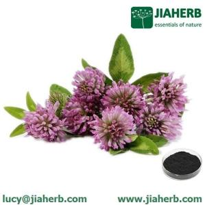 Wholesale Plant Extract: JIAHERBRed Clover Extract Lucy@jiaherb.Com
